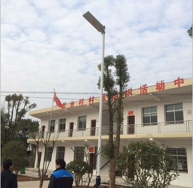 Chinese Solar Street Light Project from love and solar